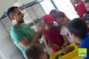 Spiegazione sui minerali al campus estivo di paleontologia