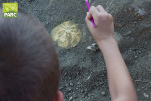 Simulazione di scavo al Geosito