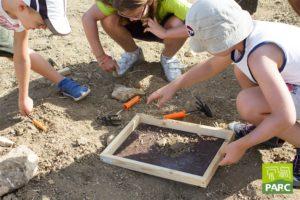 Laboratorio didattico del piccolo paleontologo al geosito