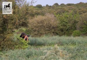 Fotografo al Parco della Giara
