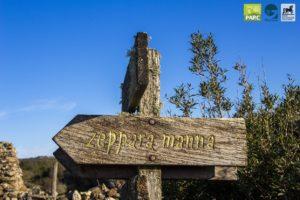 Tour guidato al Parco della Giara