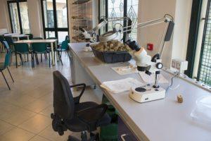 Materiale scientifico al Museo PARC di Genoni